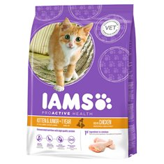 Iams Kitten & Junior