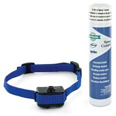 PetSafe Little Dog Deluxe Scentless  träningshalsband