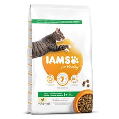 Iams Cat Adult Chicken