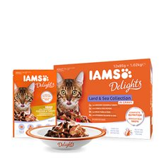 Iams Delights Land & Sea Colletion in Gravy Multipack