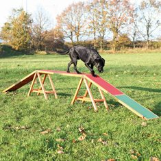 Trixie Agility Ramp